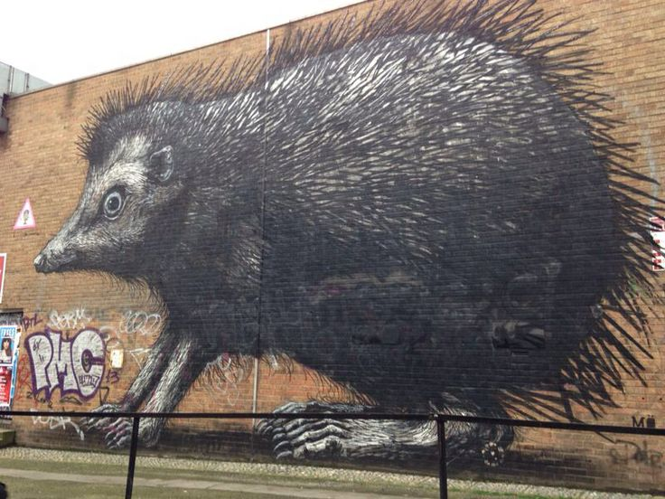 """Here ratty ratty, larger than life and a bit scary  Belgian artist """"Roa"""""""