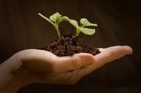 http://mondocrueltyfree.it/zucchine-ripiene-con-un-gusto-particolare/#