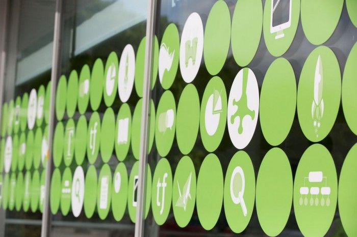 Vinyl window coverings @ Treefrogs New Newmarket Offices