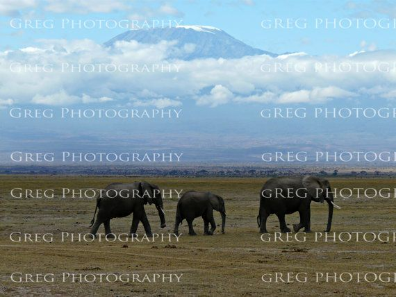 Elephants march in front of Mt. Kilimanjaro by VitaminSI on Etsy, $20.00