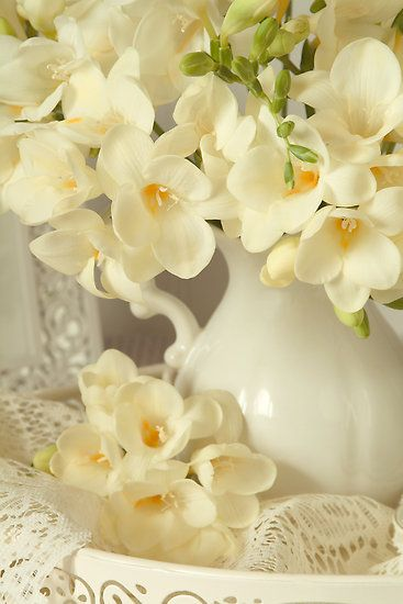 Freesia, smell so good