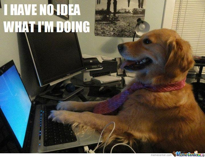 Sometimes making adult decisions feels like this...Computers, Ideas, Memes, Funny Dogs, Silly Dogs, April Fools Day, Weights Loss, Law Schools, Golden Retriever