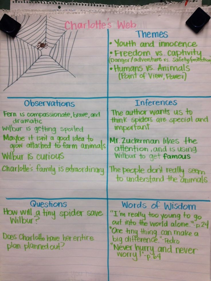 Charlotte's Web Anchor Chart use as example for other stories