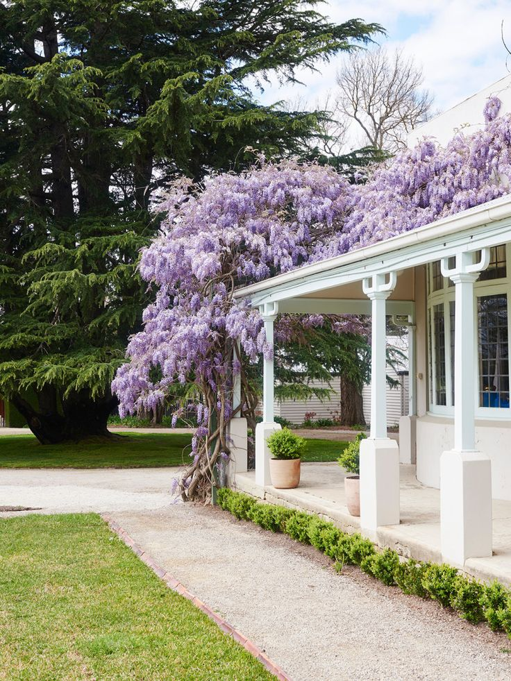 Coombe Estate · The Garden of Dame Nellie Melba - The Design Files | Australia's most popular design blog.