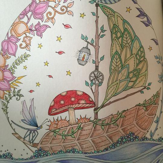 Floresta Encantada Barco Johanna Basford BasfordColoring BooksColouringAdult