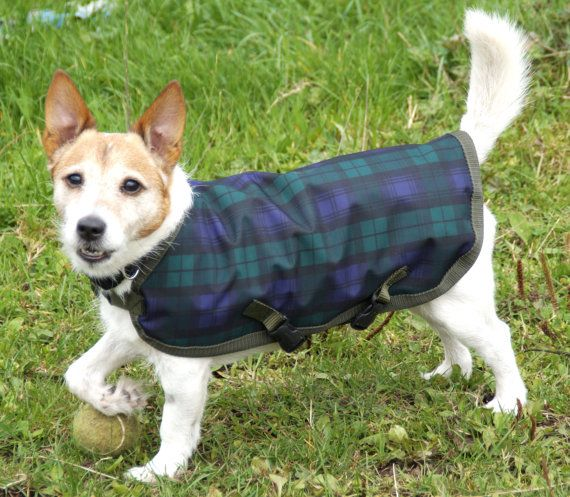 Waterproof dog coat Fleece lining Adjustable belly straps Lightweight Machine washable A really smart coat Measurement taken along dogs back from base of neck to base of tail. If you are unsure of what size you need please ask, I am happy to advise.