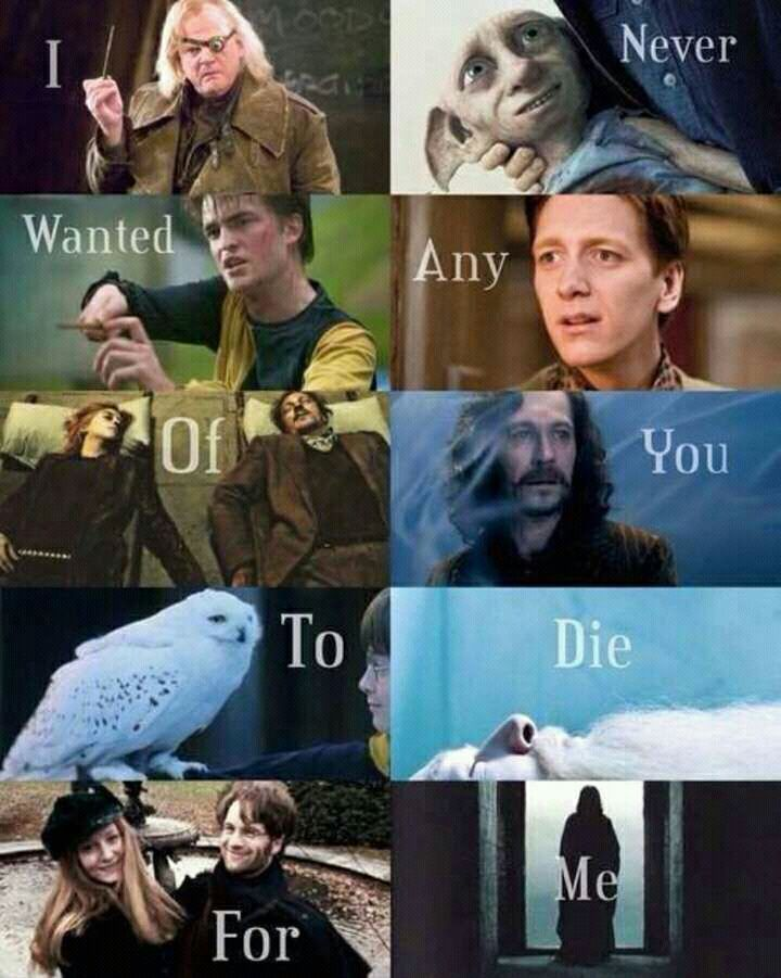 Aprendi Com Harry Potter – 141° – Lili M