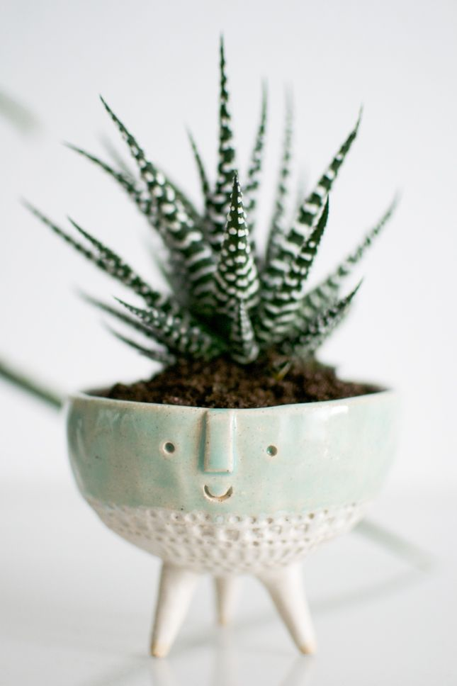 Happy plant in a handmade pot by Atelier Stella.
