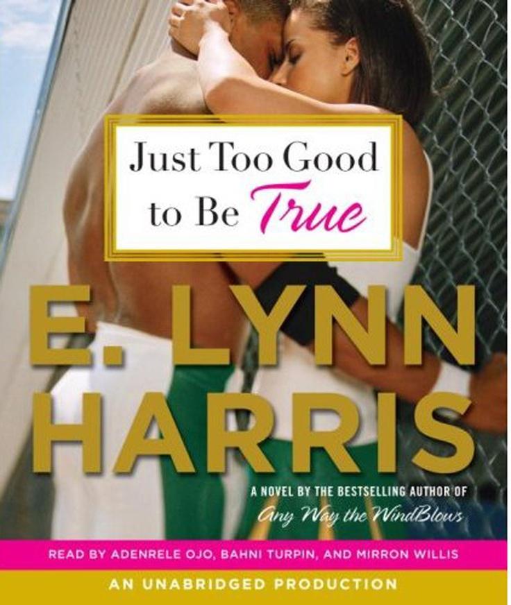 Lynn Harris book I read.