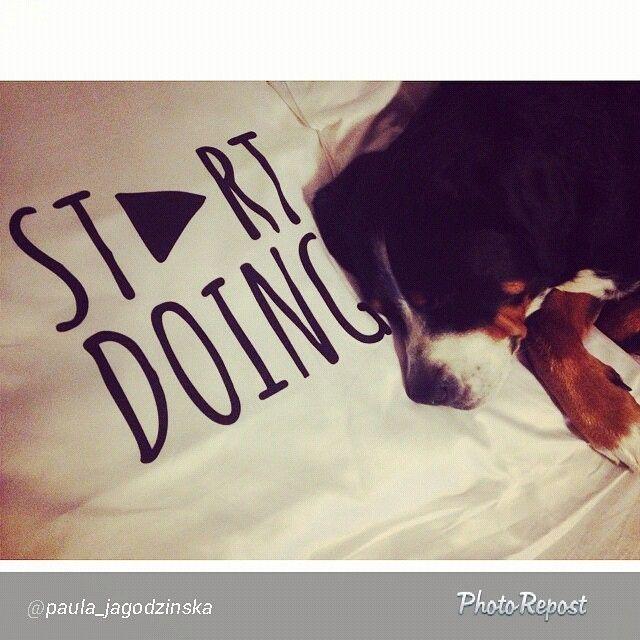 #poszewki #stopwishing #startdoing #motywacja #paula_jagodzinska #bed #dog