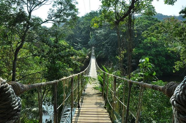 Gumbalimba Park, Roatan, Honduras