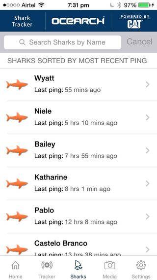 Global Shark Tracker app