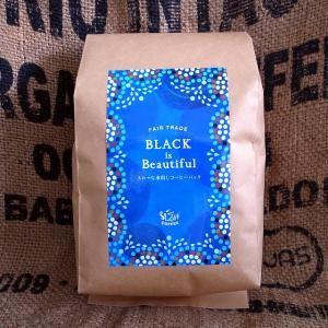 BLACK is Beautiful水出しコーヒーパック 【お徳用10リットル分】 - Slow Coffee SHOP  オーガニック、フェアトレード、自社焙煎のSlowCoffee