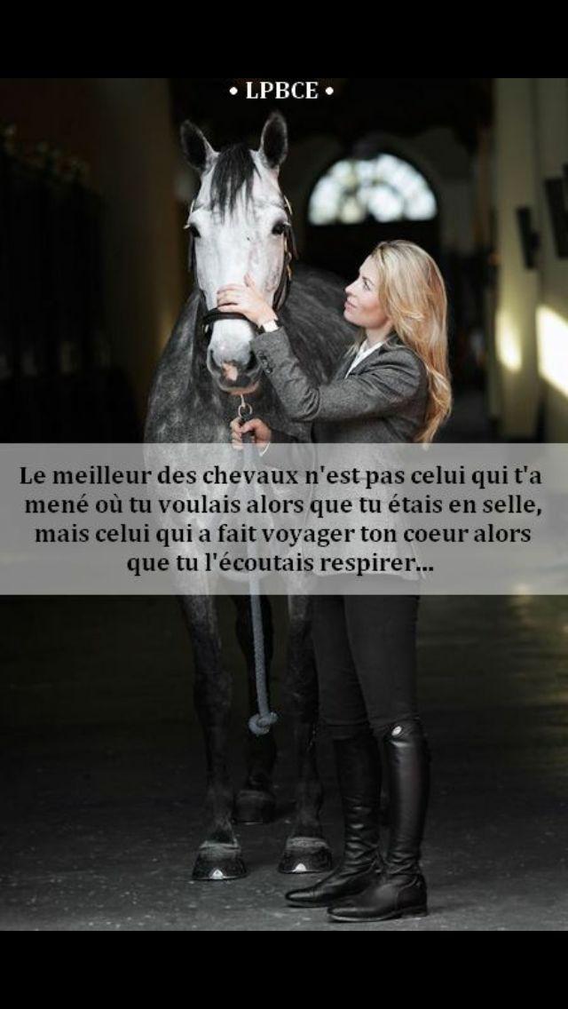 I ❤ Horses
