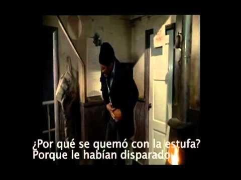 5 PORQUÉS.mov - YouTube