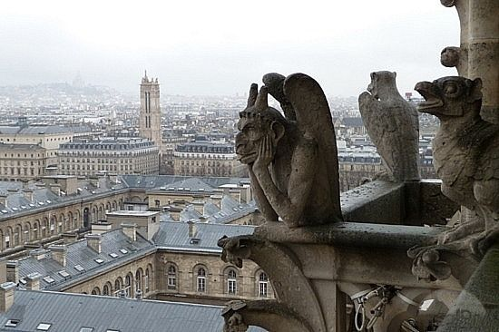 Gargoyle - cathedral of Notre-Dame