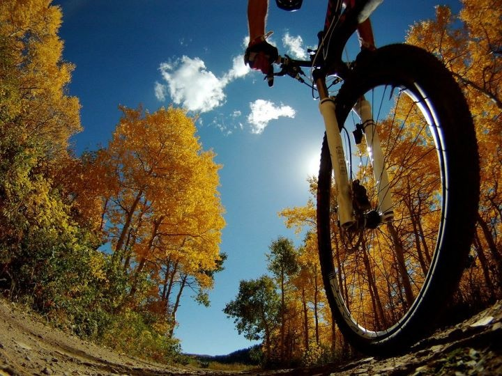 37 Best Fall Cycling Images On Pinterest Cycling Bike Rides And