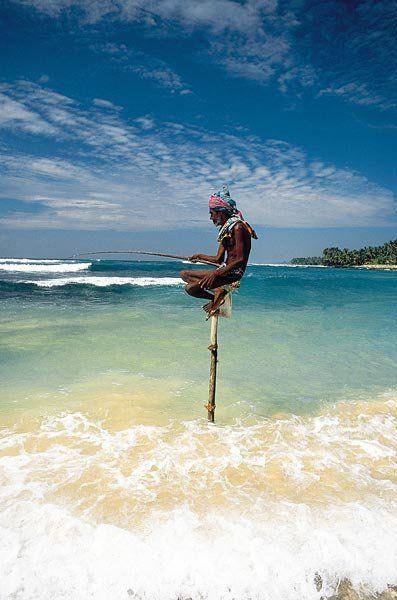 Fishing fishing pinterest fishing sri lanka and fish for Sri lanka fishing