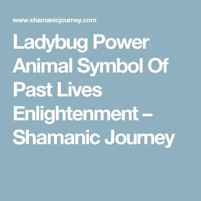 Ladybug Symbolism Shamanism Clipart Library