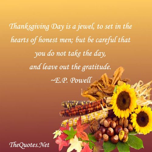 Thanksgiving Inspirational Quotes Best 25 Thanksgiving Inspirational Quotes Ideas On Pinterest .