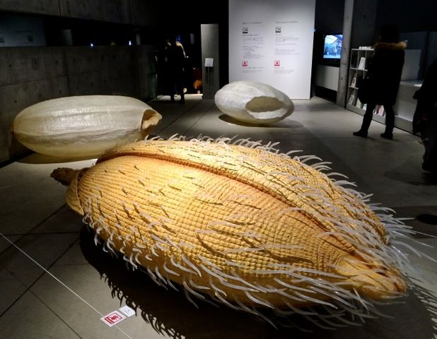 There is a giant serving of culture in one bowl of rice. The 'My name is Rice' installation — giant models of rice in different stages greet visitors to 'Kome:The Art of Rice.' Robbie Swinnerton,