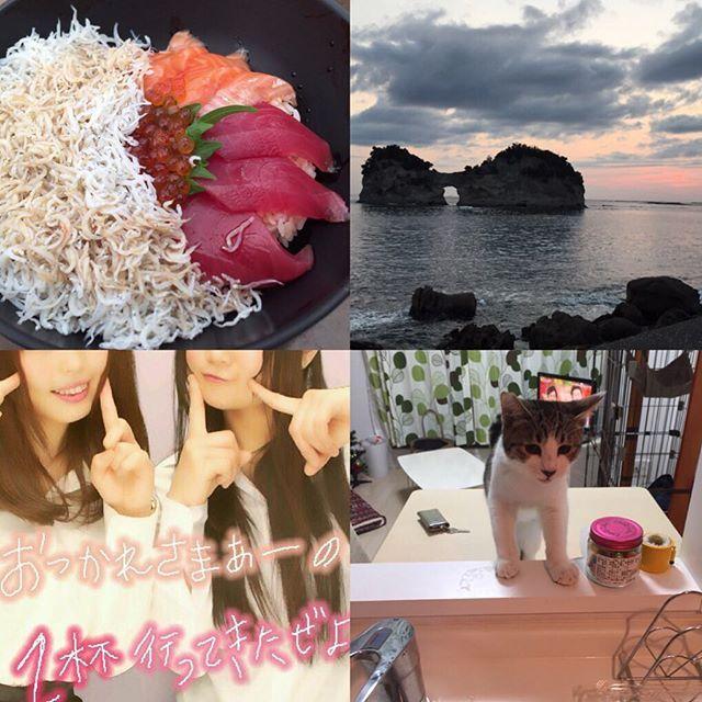 和歌山にお出かけ〜♪ こっちきて6年目?頑張ろ!💕 #さよなら三月#またきて四月 #神戸 #ドライブ #和歌山 #黒潮市場 #円月島 #白浜#ぽぽちゃん #土佐 #新しい気持ち #海鮮美味しかった #愛猫