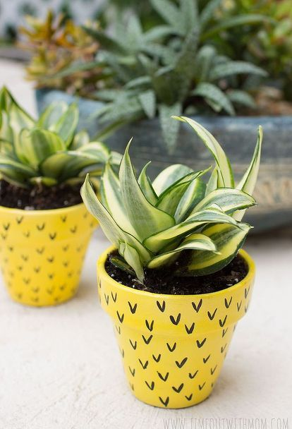 pineapple flower pots, crafts, gardening