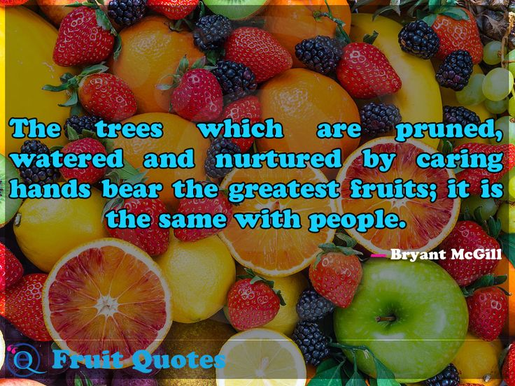 The trees which are pruned, watered and nurtured by caring hands bear the greatest fruits; it is the same with people. Fruit Quotes 27