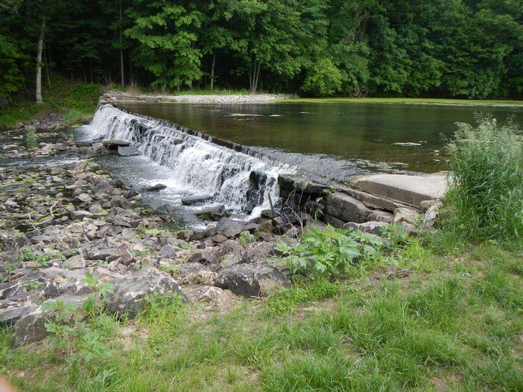 Seeley Creek - Lake Portion