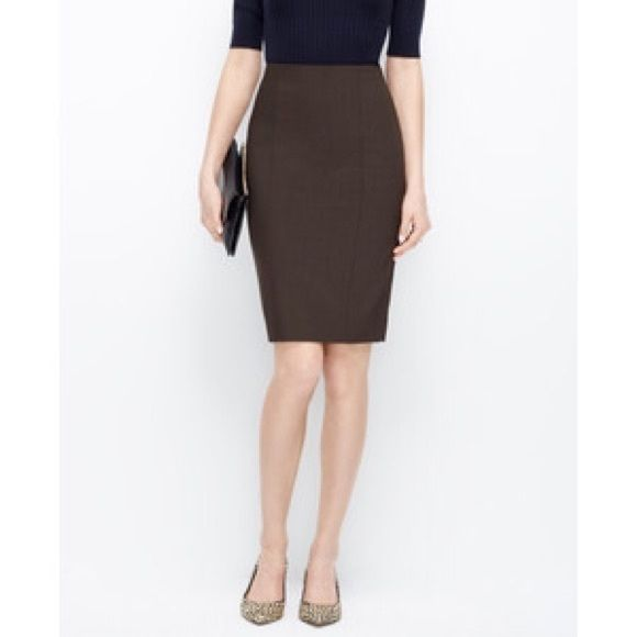 Tropical wool seamed pencil skirt from ANN TAYLOR Tropical wool seamed pencil skirt in coffee bean from ANN TAYLOR. Super sleek, seamed design along the front, hidden center back zip, center back vent. Brand new with tags, never before worn. Open to reasonable offers. Ann Taylor Skirts Pencil
