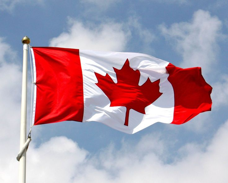 The emblem on the Canadian flag is a red maple leaf