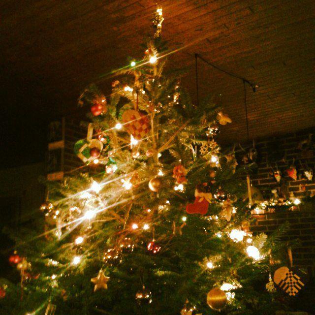 Glædelig jul  Buon Natale Merry Christmas