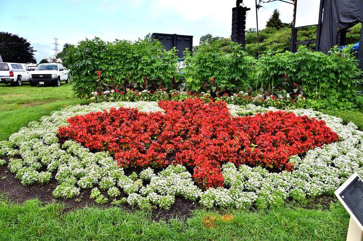 Canada Day, Spencer Smith Park, Burlington, ON