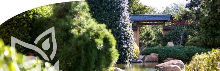 Dubbo Regional Botanic Garden | Home