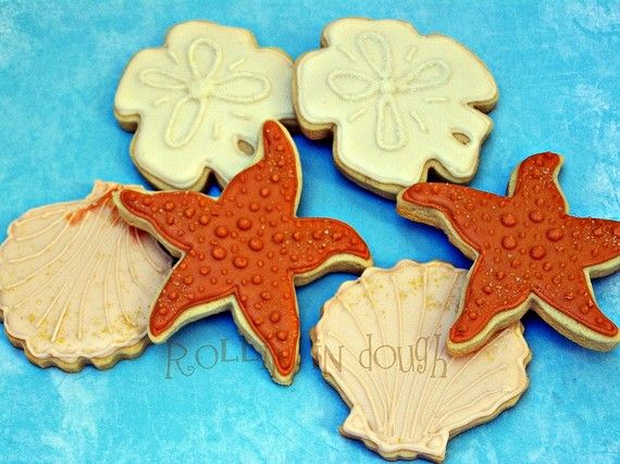 Seashell Cookies Sand Dollar Cookies Starfish by rollinindough, $26.00