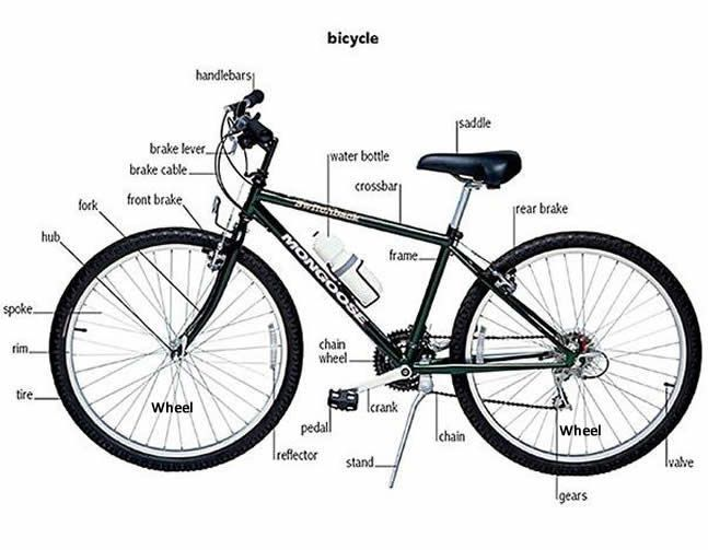 Learning Parts Of A Bicycle Learn Or Practise English With Native