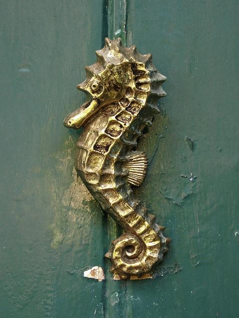 86 best images about doorknockers on pinterest seahorses peter cook and door knobs - Seahorse door knocker ...