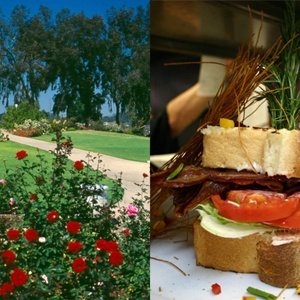 Best Picnic Parks - Where to Picnic - Delish.com