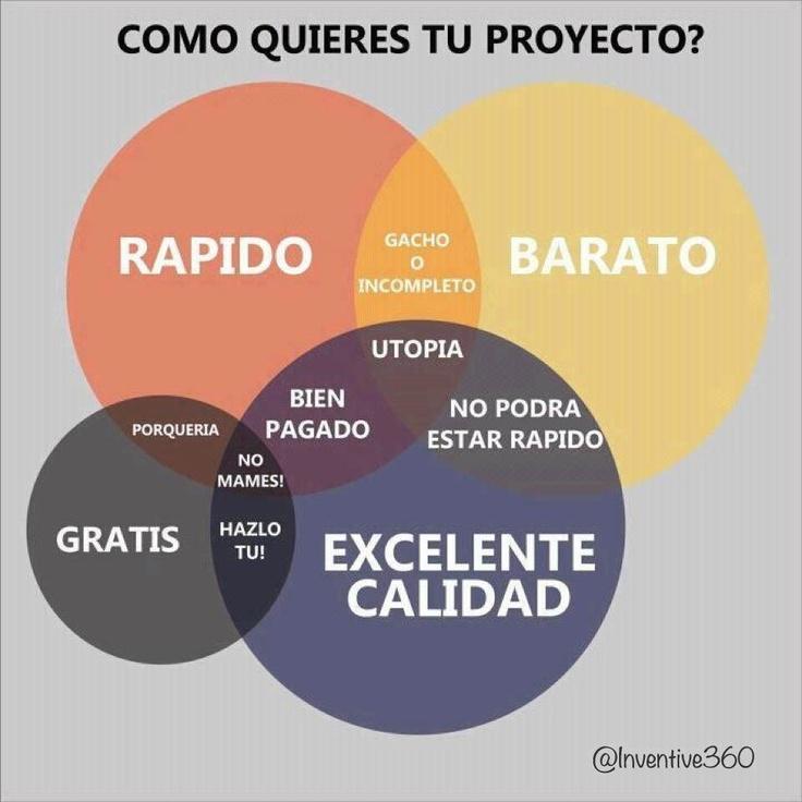 Excelente gráfica    ¿Cómo quieres tu proyecto?