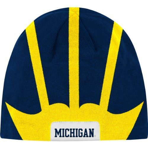 Michigan Wolverines Helmet Knit Hat Go Blue Pinterest