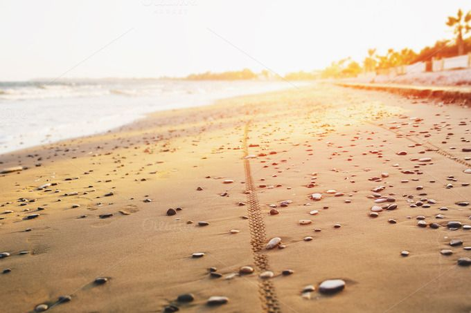 Check out Bicycle tyre tracks on a sandy beach by odpium on Creative Market