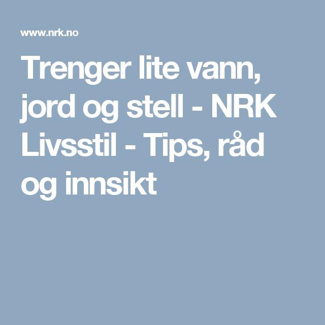 Trenger lite vann, jord og stell - NRK Livsstil - Tips, råd og innsikt