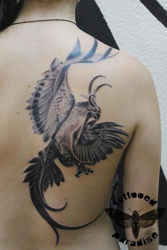 Black and white Phoenix. Nice!