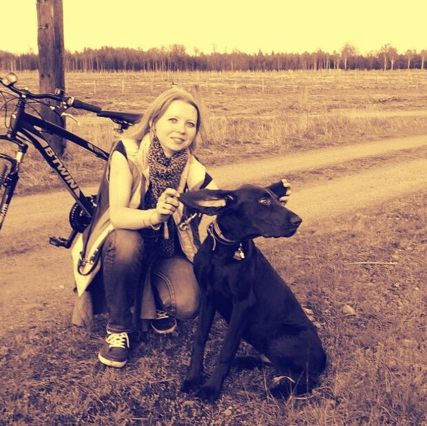 german shorthaired pointer & bike