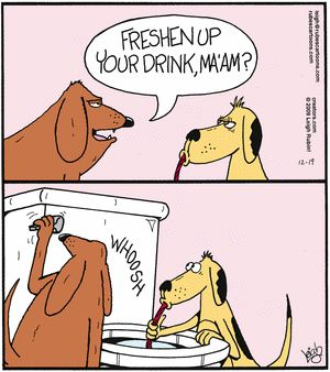 Dog Bartenders