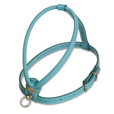 PetEgo Fashion Soft Leather Dog Harness | AllModern