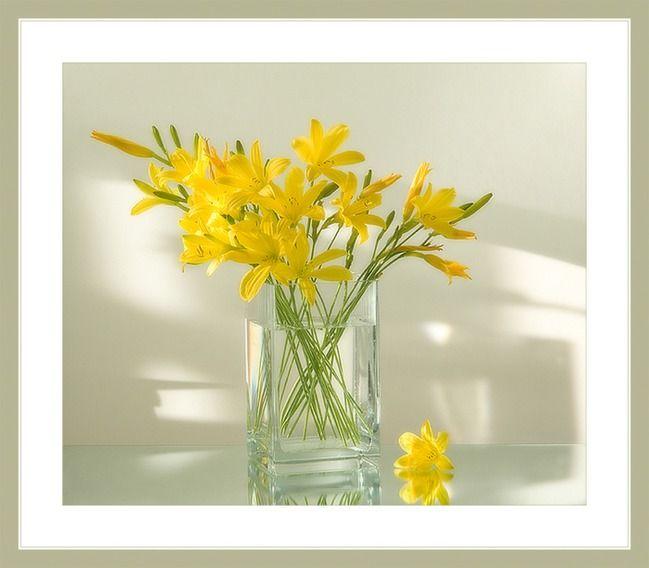 Прозрачная лаконичность для изящного цветка: Группа Беседка «Дачная жизнь»