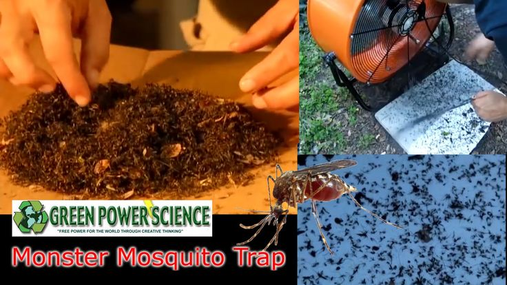 DIY MOSQUITO TRAP pesticide FREE mosquito control Solar Powered Chikungunya