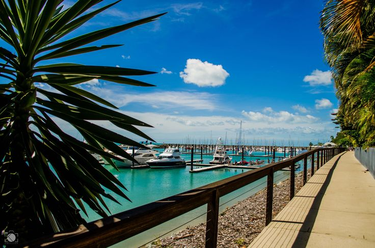 Abell Point Marina © Karina Landim Photography
