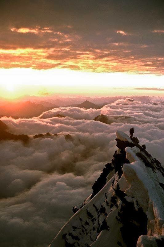 Amazing world.